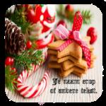 Luxe Hoogglans Onderzetters Kerstmis Koekjes + tekst