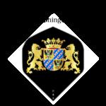 Flights met het provincie wapen van Groningen