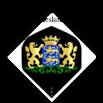 Flights met het Provincie wapen van Friesland