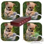Luxe Hoogglans Onderzetters Chihuahua