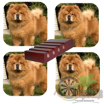 Luxe Hoogglans Onderzetters Chow Chow