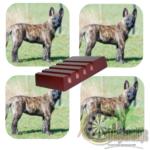 Luxe Hoogglans Onderzetters Hollandse Herder