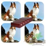 Luxe Hoogglans Onderzetters Lassie Hond